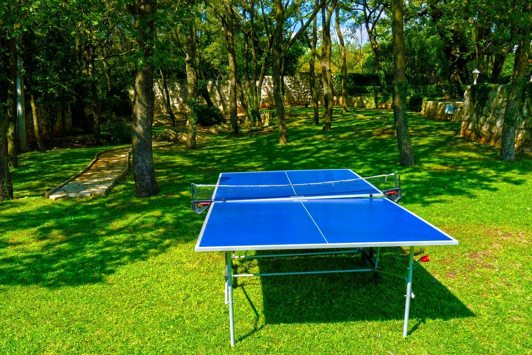Table tennis available in the garden