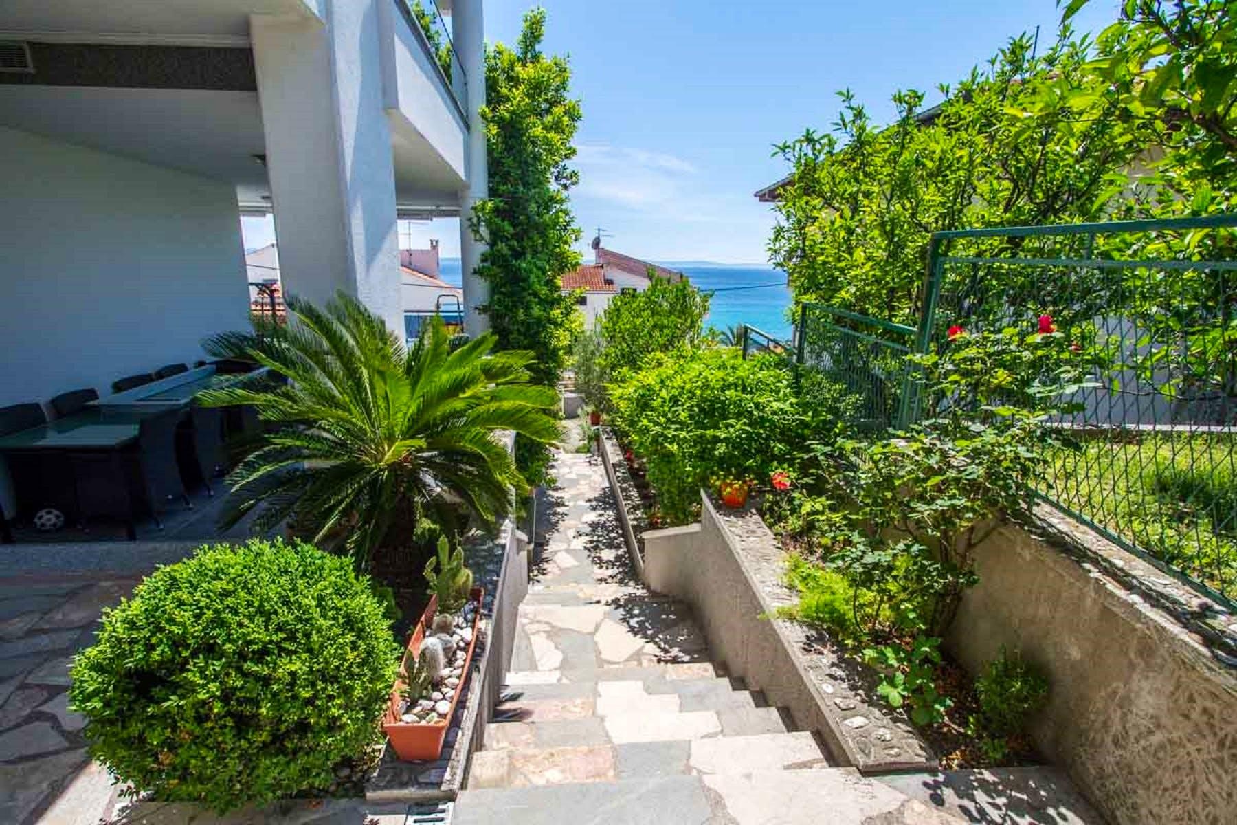 Outdoor area boasting Mediterranean flora