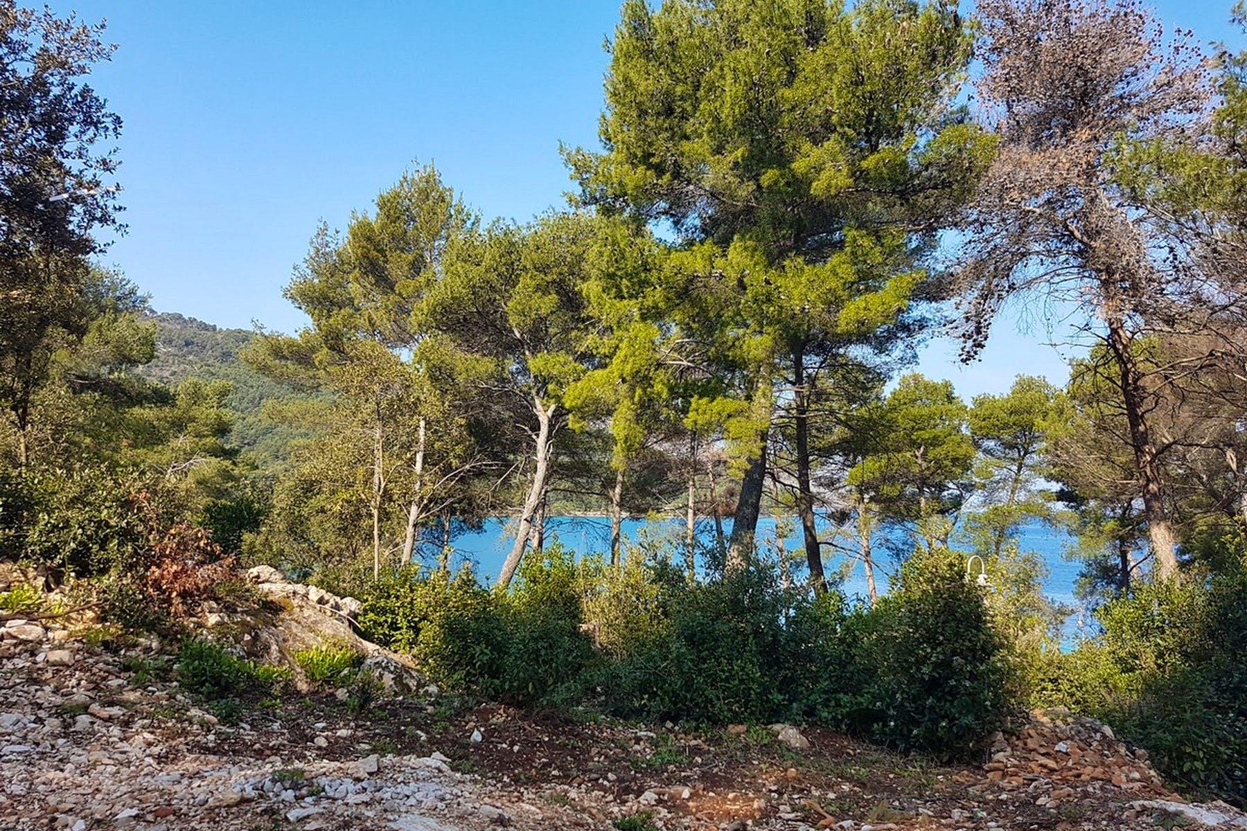 Bogata Mediteranska flora