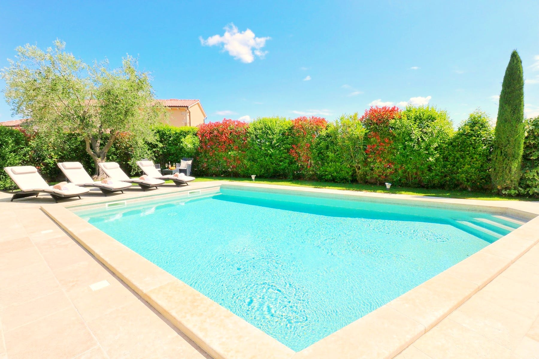 Swimming pool surrounded by authentic greenery
