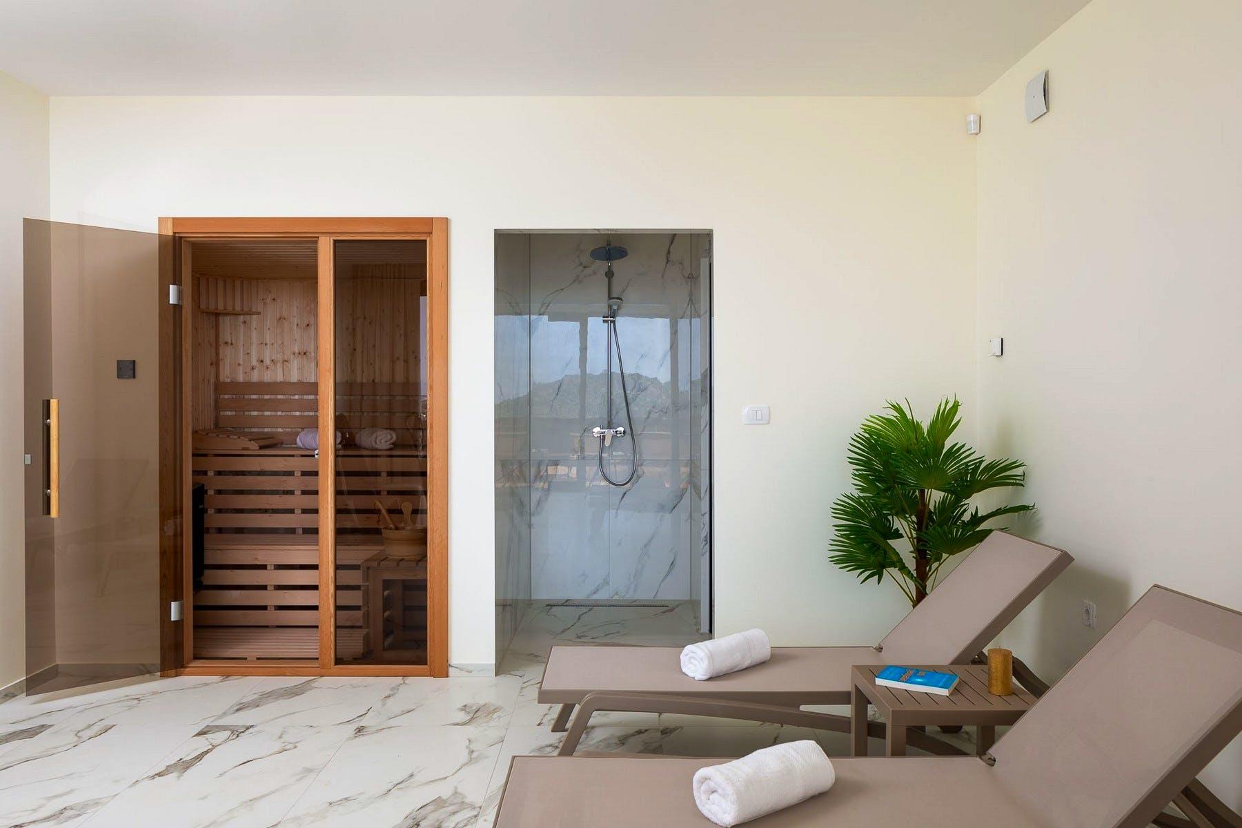Wellness area with sauna and shower
